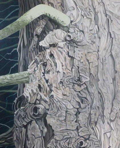Cypress tree 10