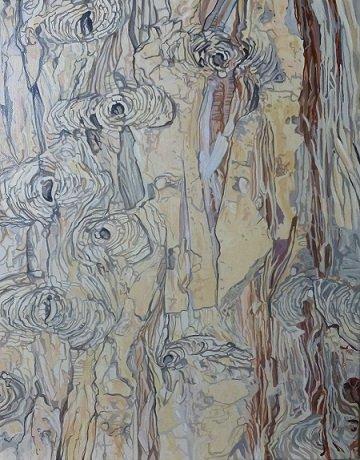 Cypress tree 4