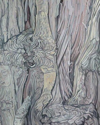 Cypress tree 6