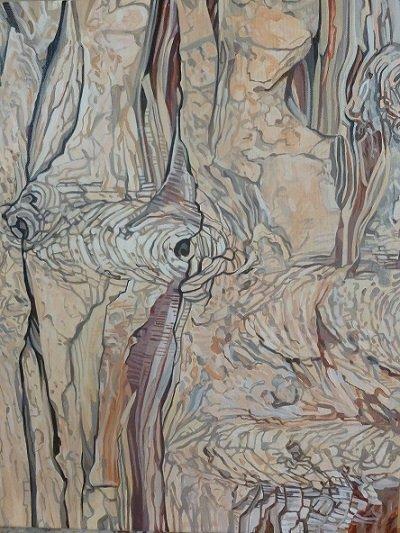 Cypress tree7