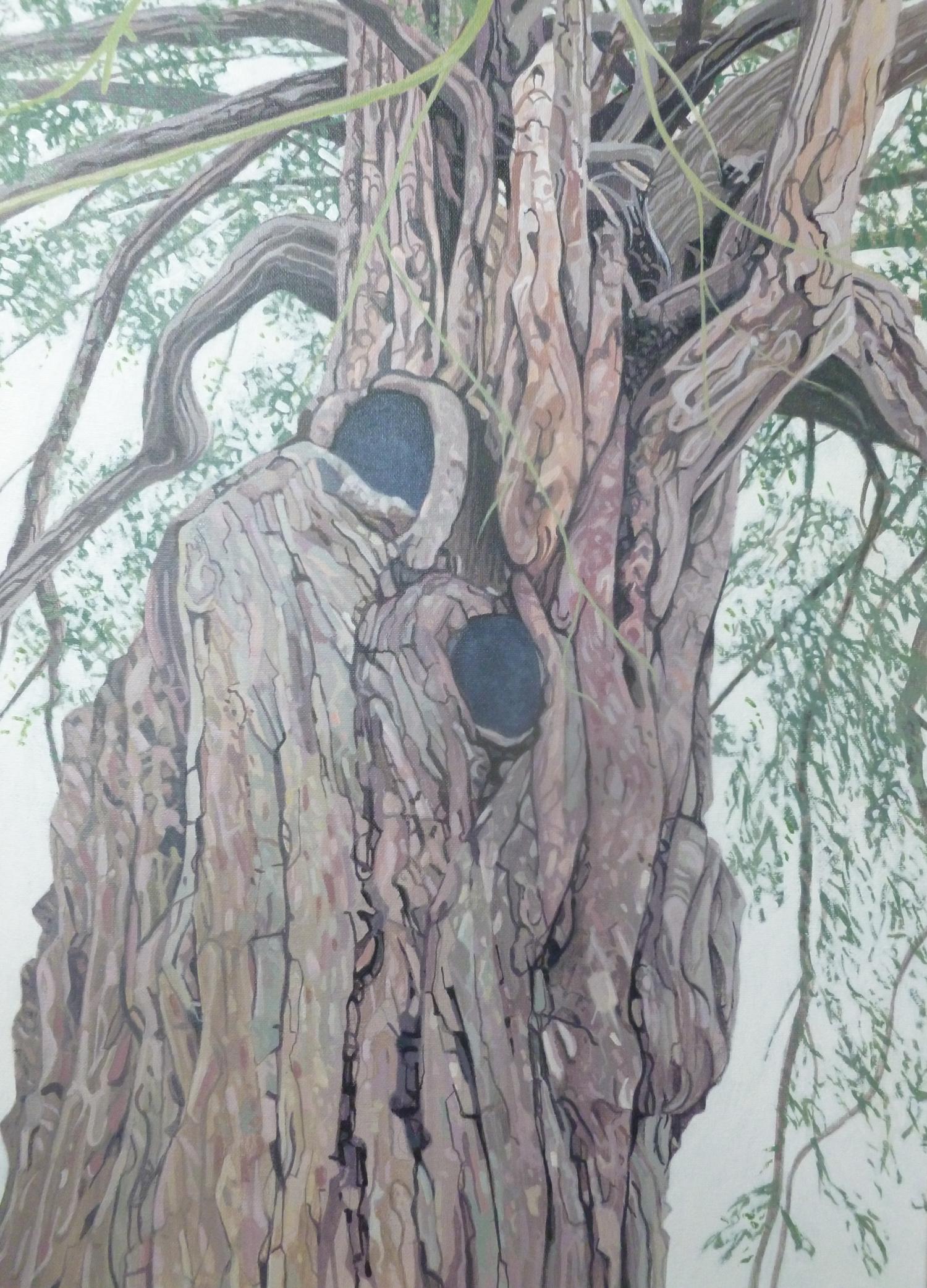 Bery Pomeroy Yew Tree